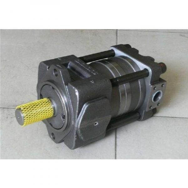 PVQ13-A2L-SE1F-20-C14-12 Vickers Variable piston pumps PVQ Series Original import #1 image